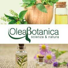 Olea Botanica